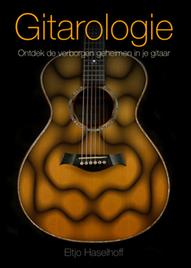 gitaar voor dummies